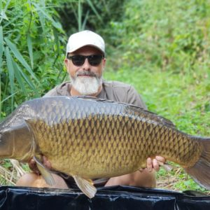 Eik Welk from Germany with a very pretty common, Eik has taken a few deliveries from us,many thanks Eik !