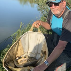 Mike Hosgood from Exeter with a near ton catch up at Todber on our Yellow Baninion Boosted Corn!